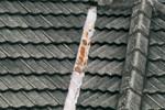 Rđa ili oštećenja, posebno oko vodonepropusnih obloga i sredstava za pričvršćivanje